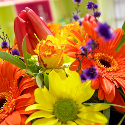 Camborne Florist – Brought to you by Wheal Sara Flowers